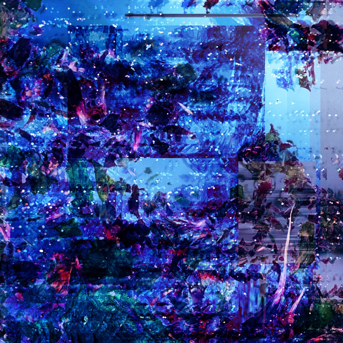 Glitch Art Entry 02
